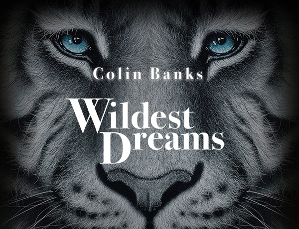 Colin Banks - Wildest Dreams image