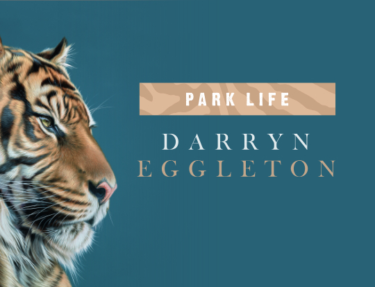 Darryn Eggleton - New Animal Releases image