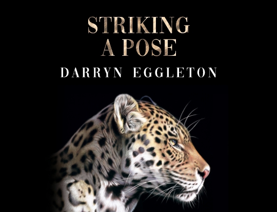 Darryn Eggleton - Something wild image